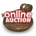 Transylvania County Auction